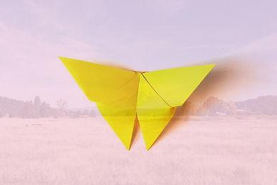 origami%2Bbutterfly%2Btutorial_edited.jp