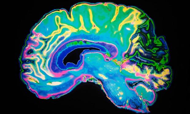 An-artificially-coloured--012.jpg