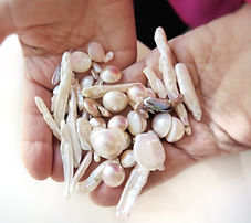 Uniqe pearls Maria de la Luz Jewelry Custom Jewels Rare Pearls in Hand