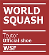 WSF Official Shoe LOGO.png