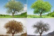 solution-07.jpg