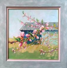 Персики на Хмельниччині цвітуть(43х43) см.,