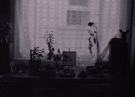 Screen Shot 2021-02-03 at 1.24.58 PM.jpg