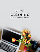 SpringClean_.jpg