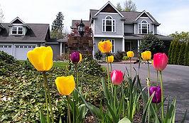 home in spring-2.jpg