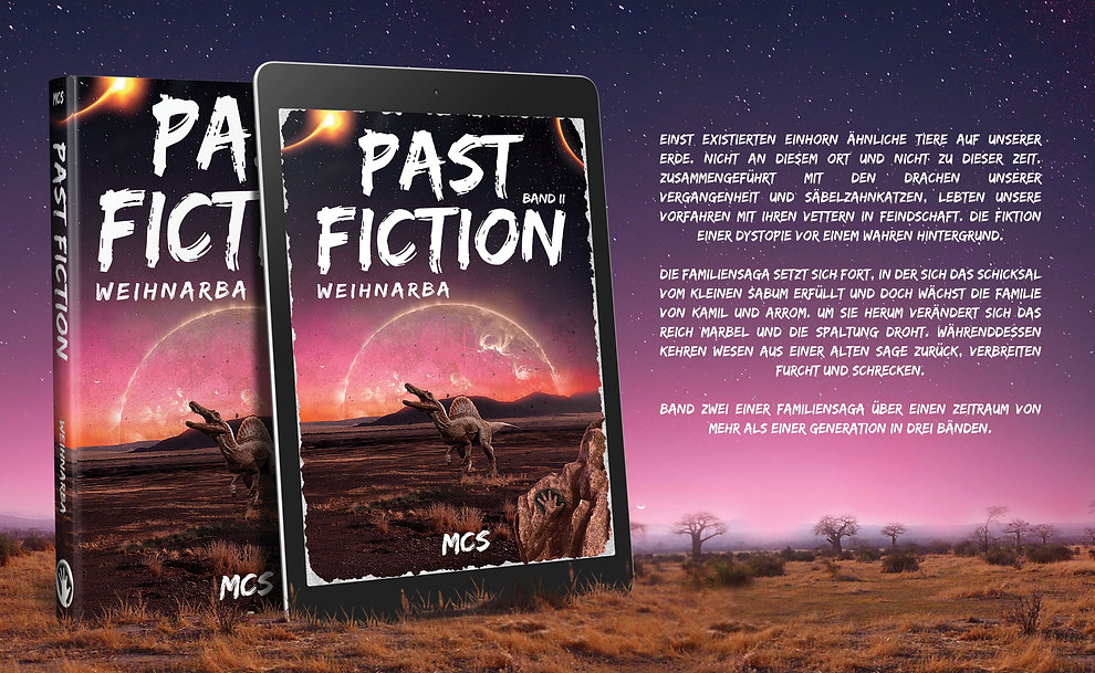 Past fiction Banner Buch 2.jpg