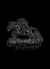 Logo boscross 1000x1000.png