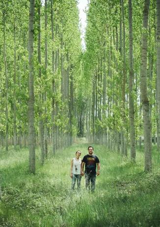 Pareja se toma de las manos y mira enfrente en medio de un bosque de Cataluña