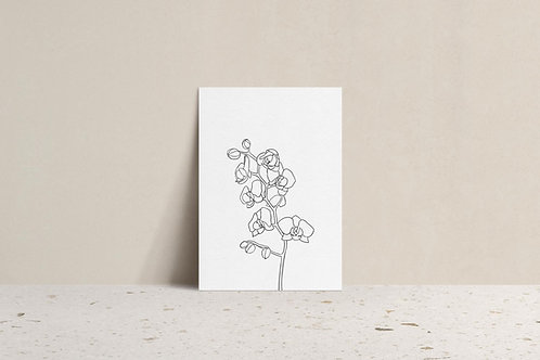 minimal orchid flower line drawing illustration art print neutral mockup by lugi design