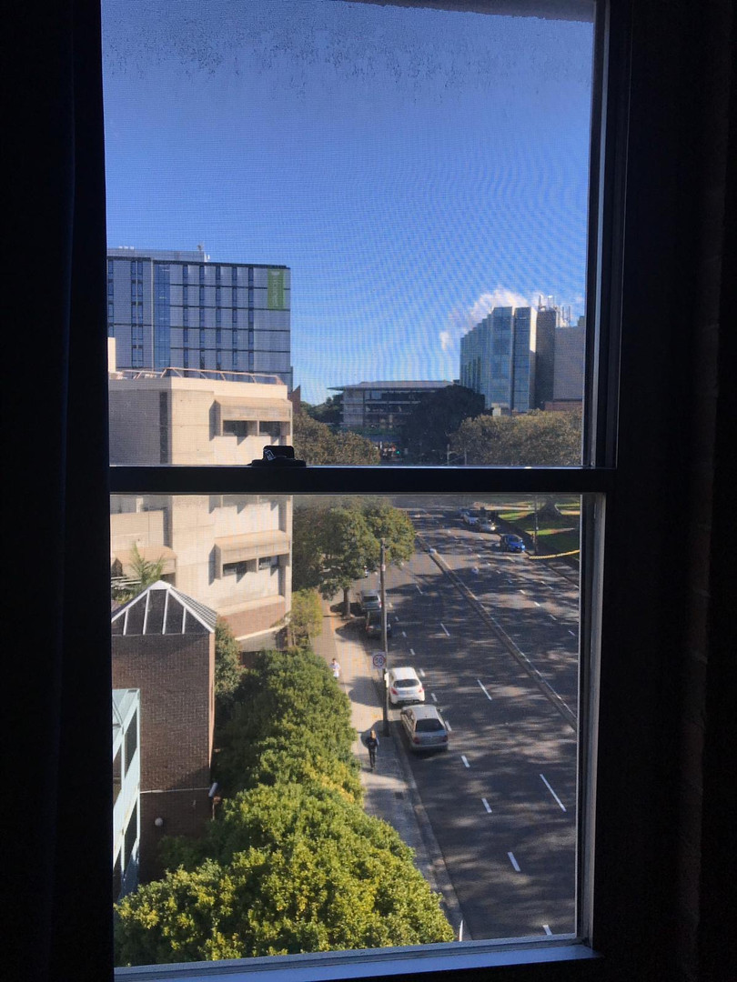 View from my room in IH