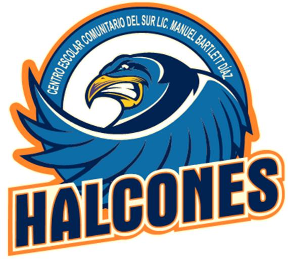 halcon (1).png