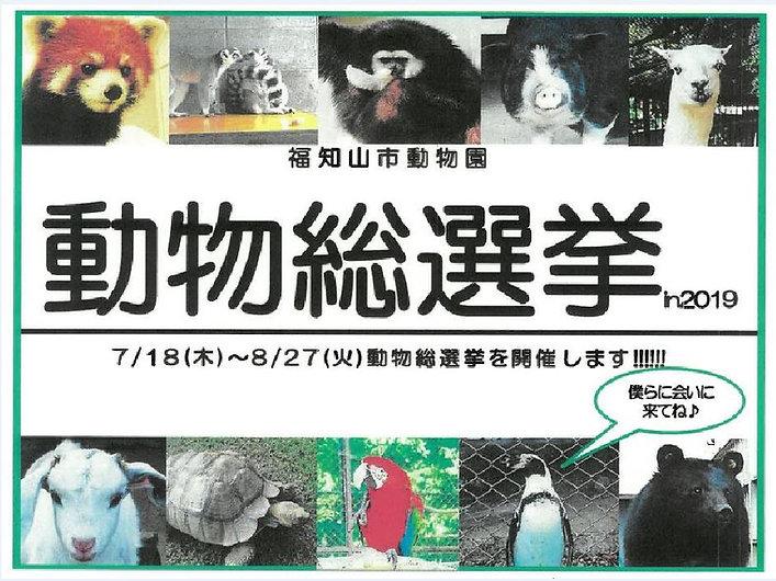 2動物総選挙.JPG