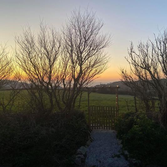 A winter sunset from the garden