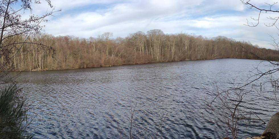 Sophro-balade par l'étang Neuf