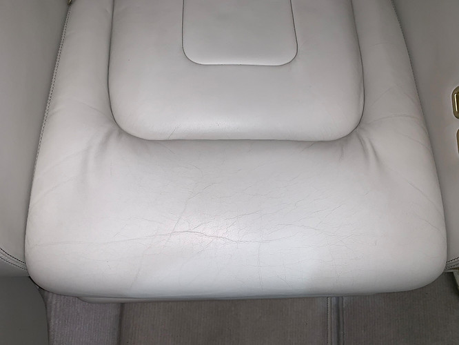 Embraer Leather Interior repair restoration