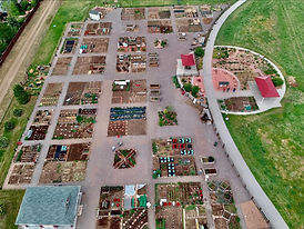 aerial photo of garden.jpg