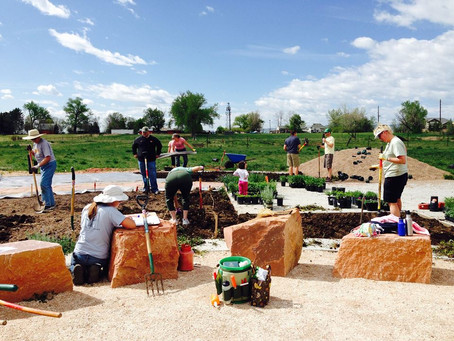 Rose Roots History: Grassroots Community Engagement Results in Community Garden