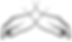 logo - iconForMenu.png