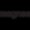 magnes logo.png