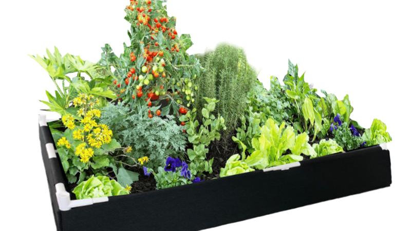 Raised Container Garden Bed Including Support Structure Eco-Friendly
