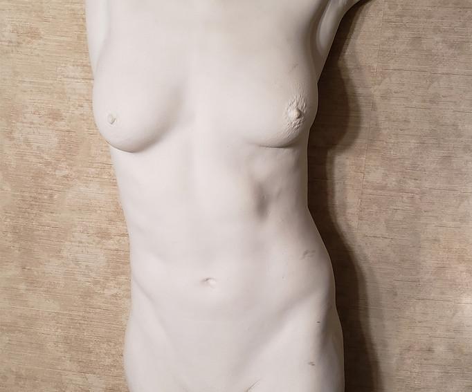 Nude lifecast in plaster