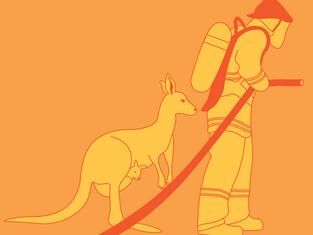The Australian Bushfire Crisis