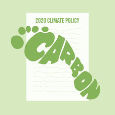 Environmental Policy and the 2020 Election