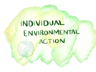 Individual Action In Environmentalism Matters