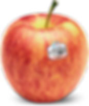 stemilt-gala-apple.png