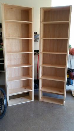 Bookshelves Before Install