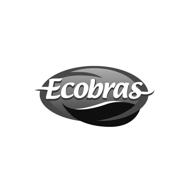 _0026_ecobras.jpg