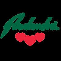 logo radenska 4.png