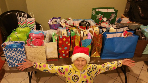 Forgoing her Christmas gifts she made 25 new owner adoption bags and donated them to a local shelter