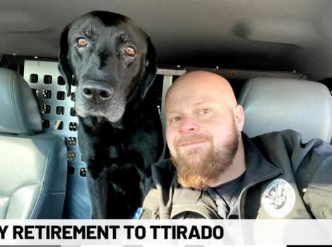 Tennis ball surprise for retiring TSA dog