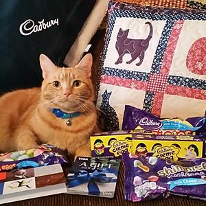Oliver the Cat - Cadbury Bunny