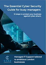 Cybersecurity for Busy Managers.PNG