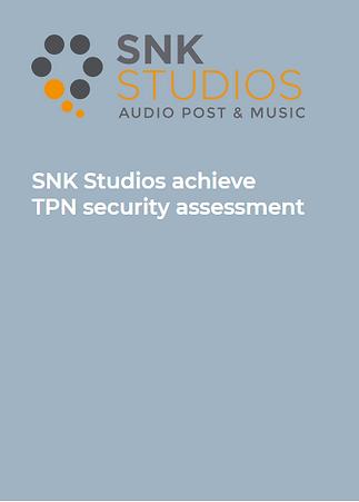 SNK Studios TPN Assessment.PNG