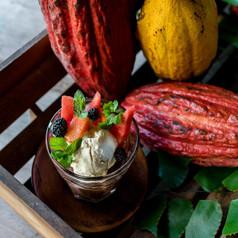 Sobert cacao et crème glacée vanille