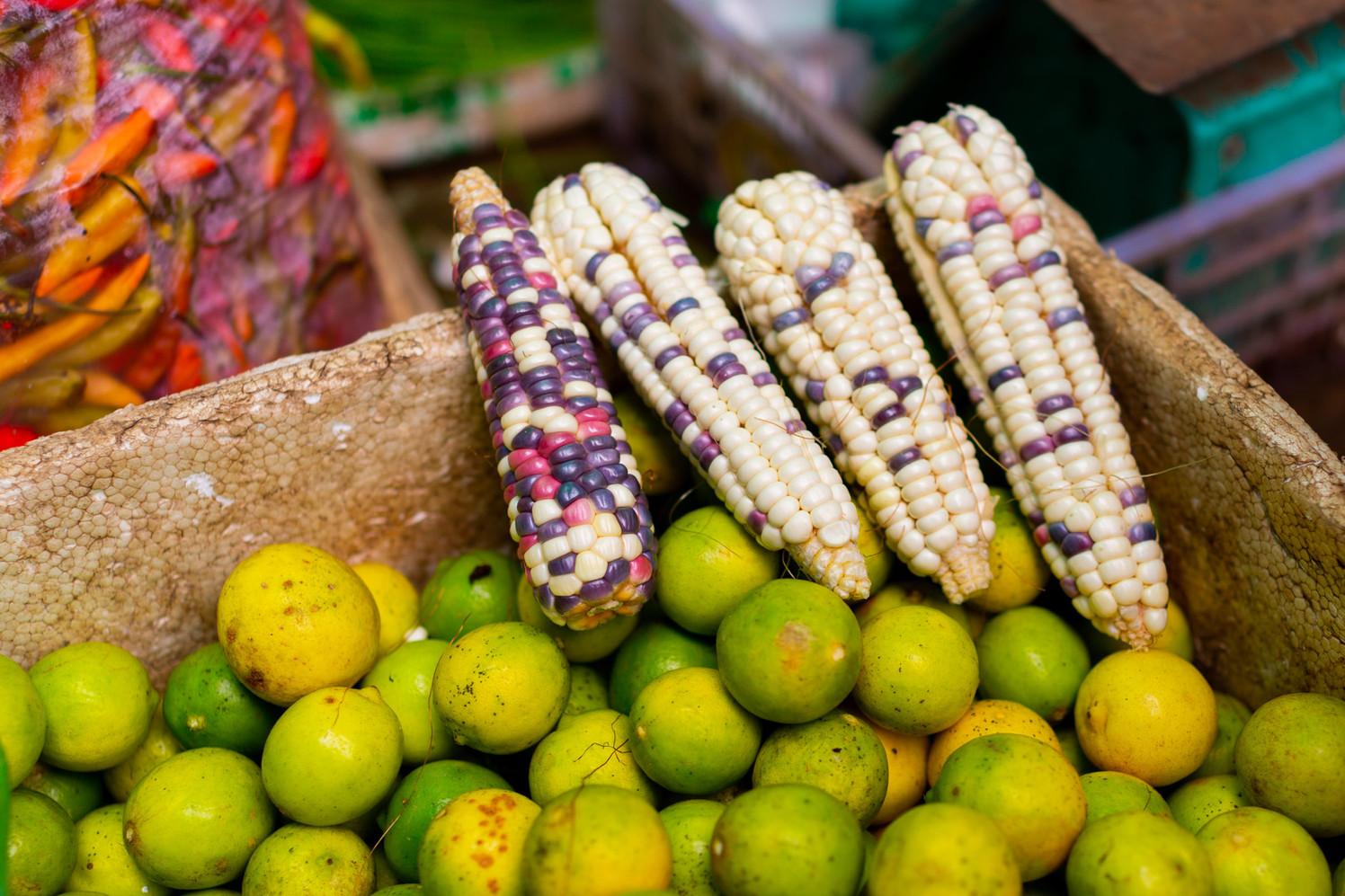 Maïs arc-en-ciel et citrons verts (Laos)
