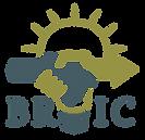 BRIC Logo_BRIC Logo.png