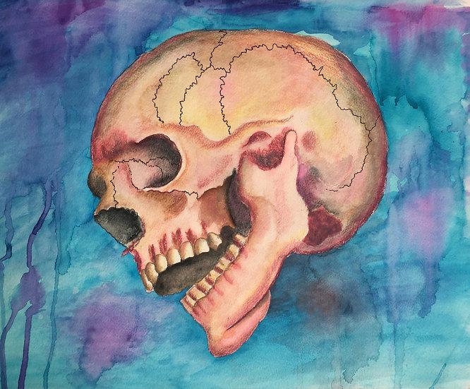 The Cranium III