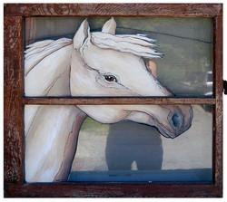 Horse on old Window