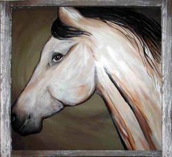 GRey horse on old window