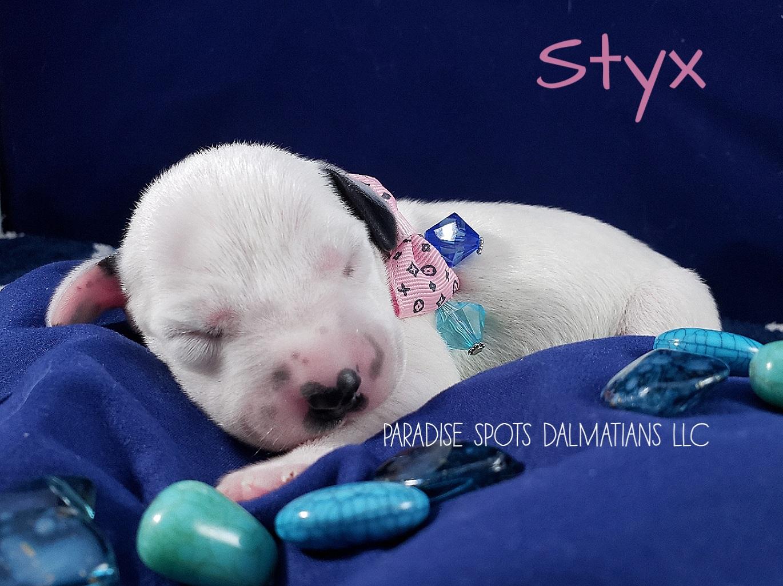 Styx-1w (1)