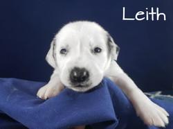 Leith-2w (1)