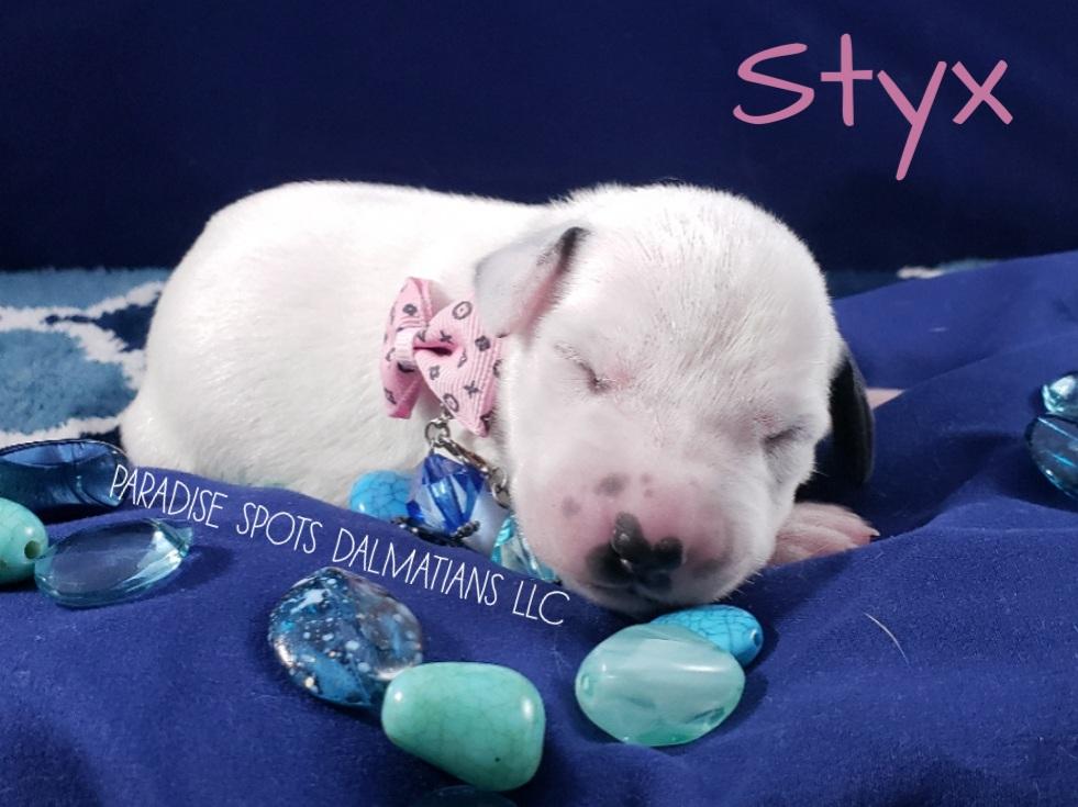 Styx-1w (4)