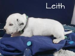 Leith-2w (5)