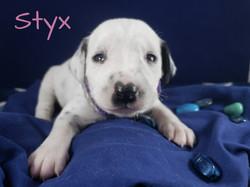Styx-2w (2)