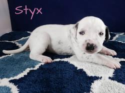 Styx-2w (7)