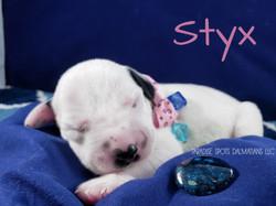 Styx-1w (5)